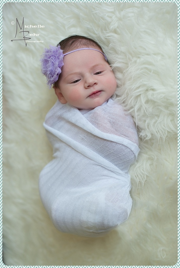 Outdoor Newborn session, Huntington NY